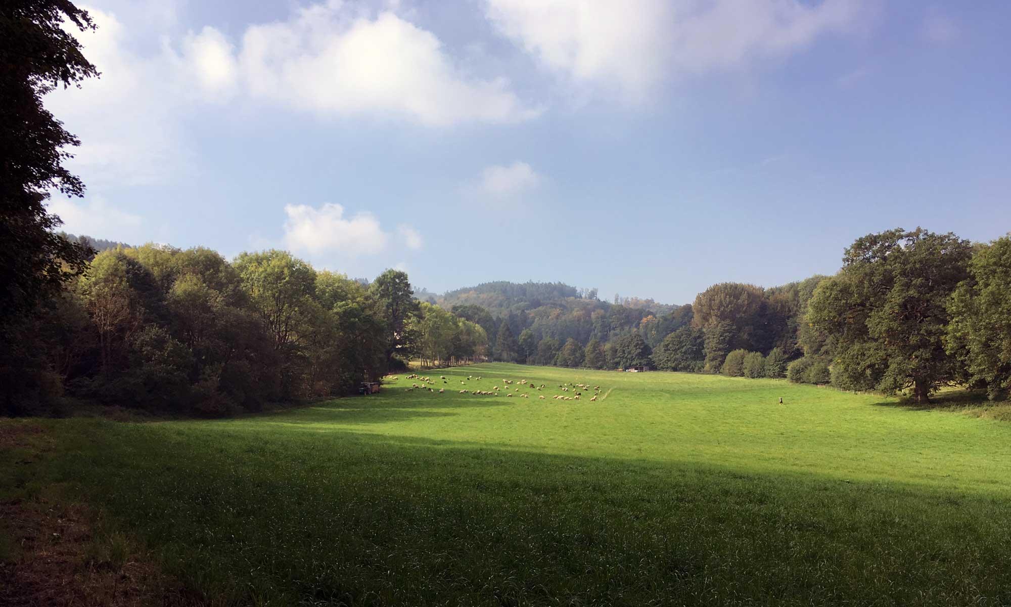 Das Tal vor Baeingsen
