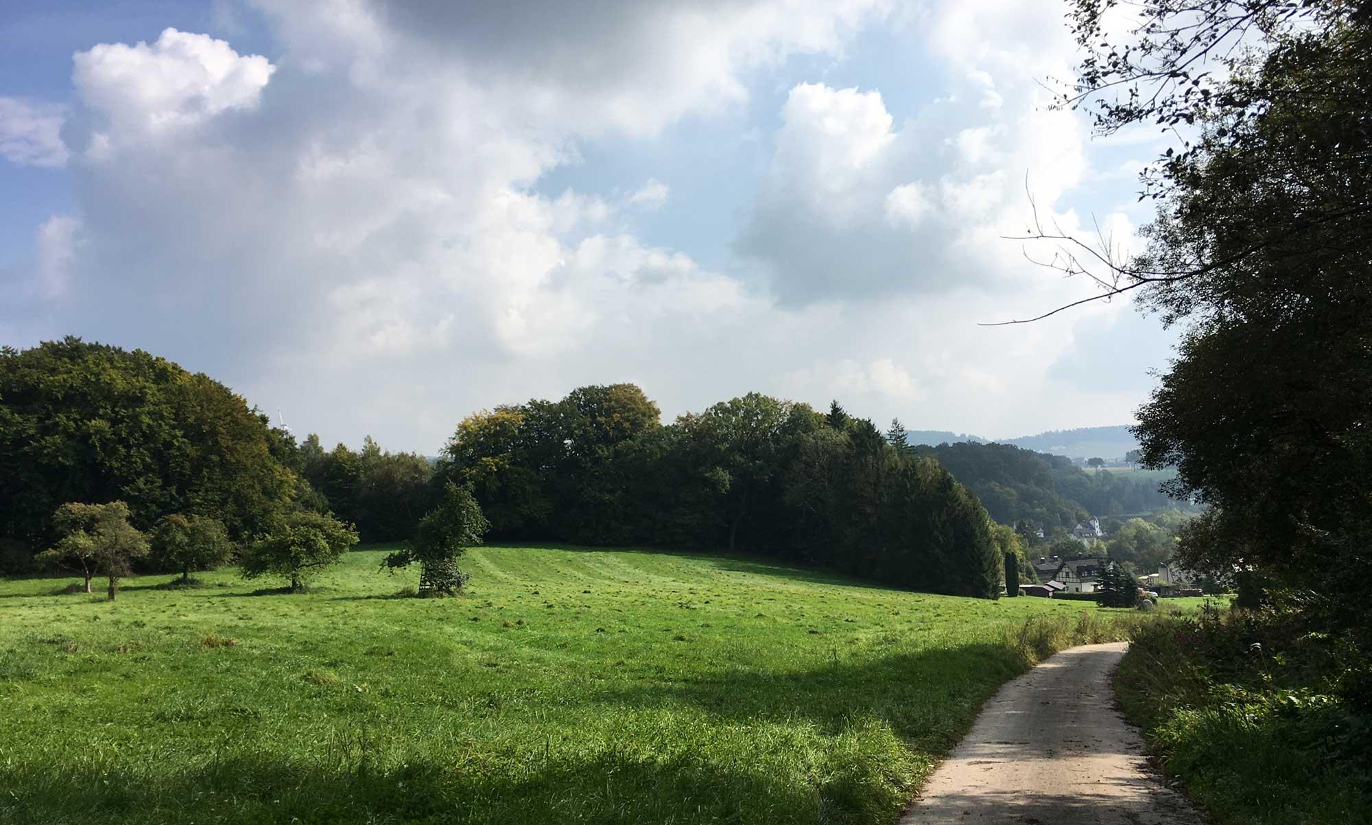 Abstieg nach Volkringhausen