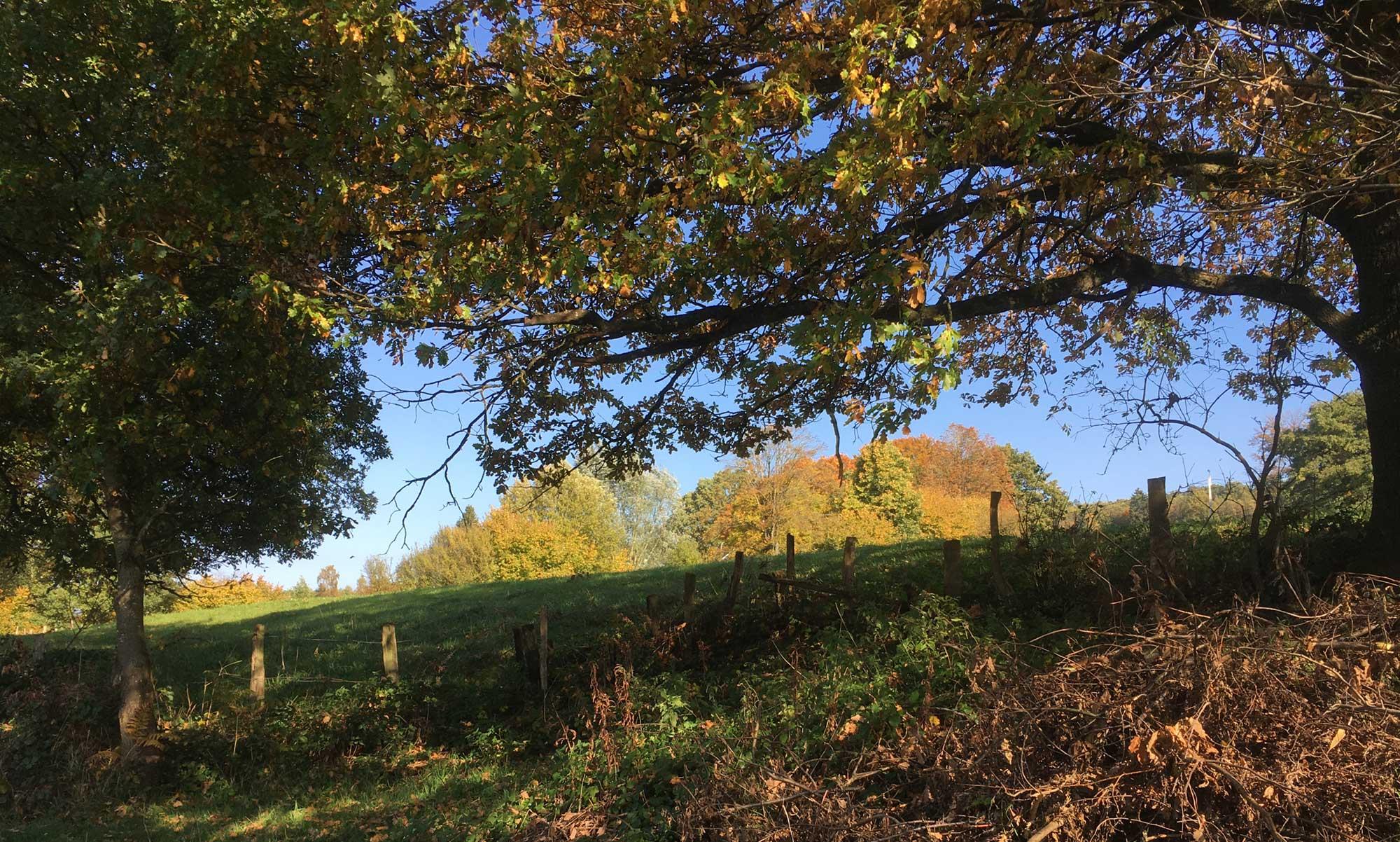 Warchetal im Herbstlicht