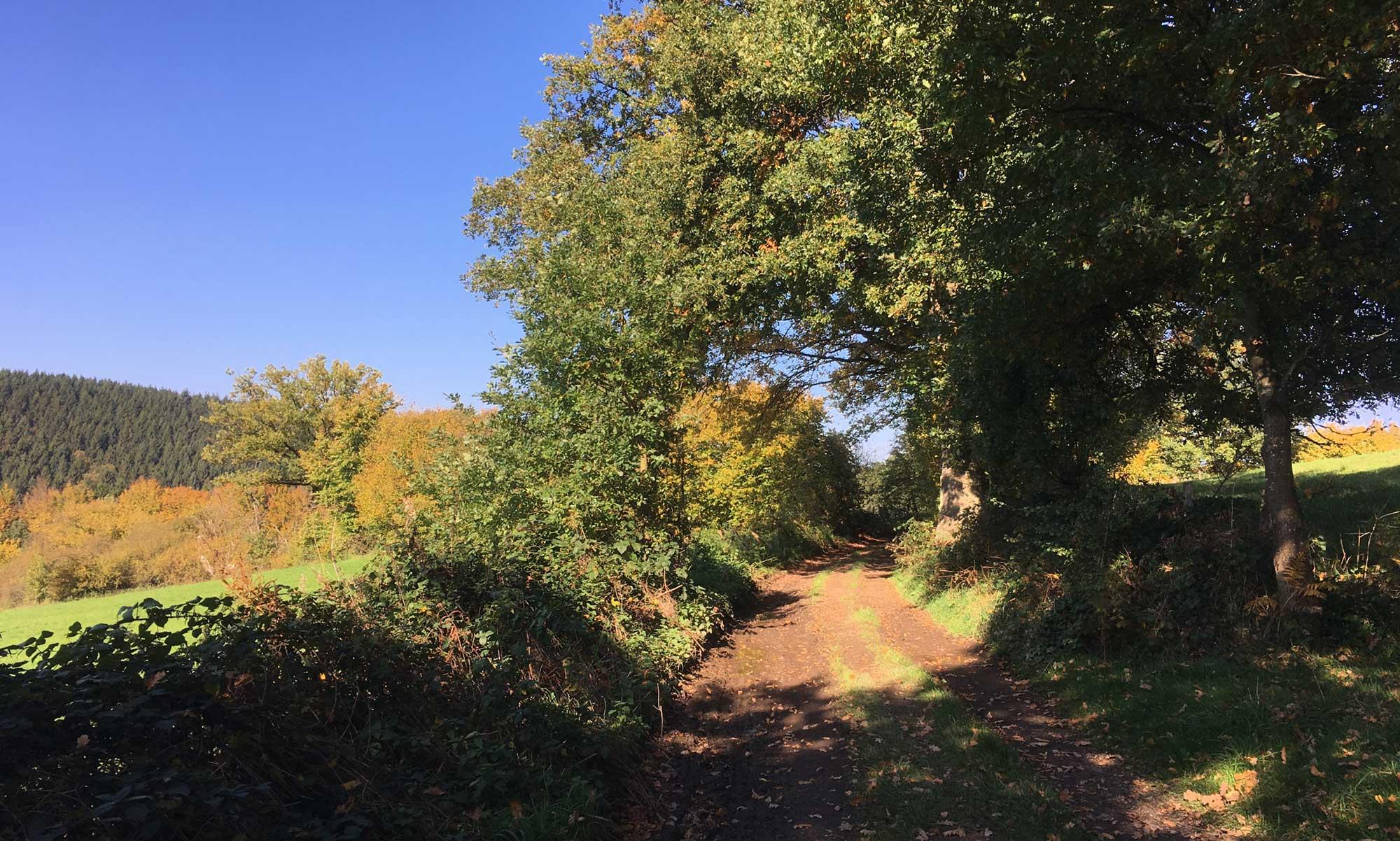 Warchetal Wanderweg im Herbstlicht