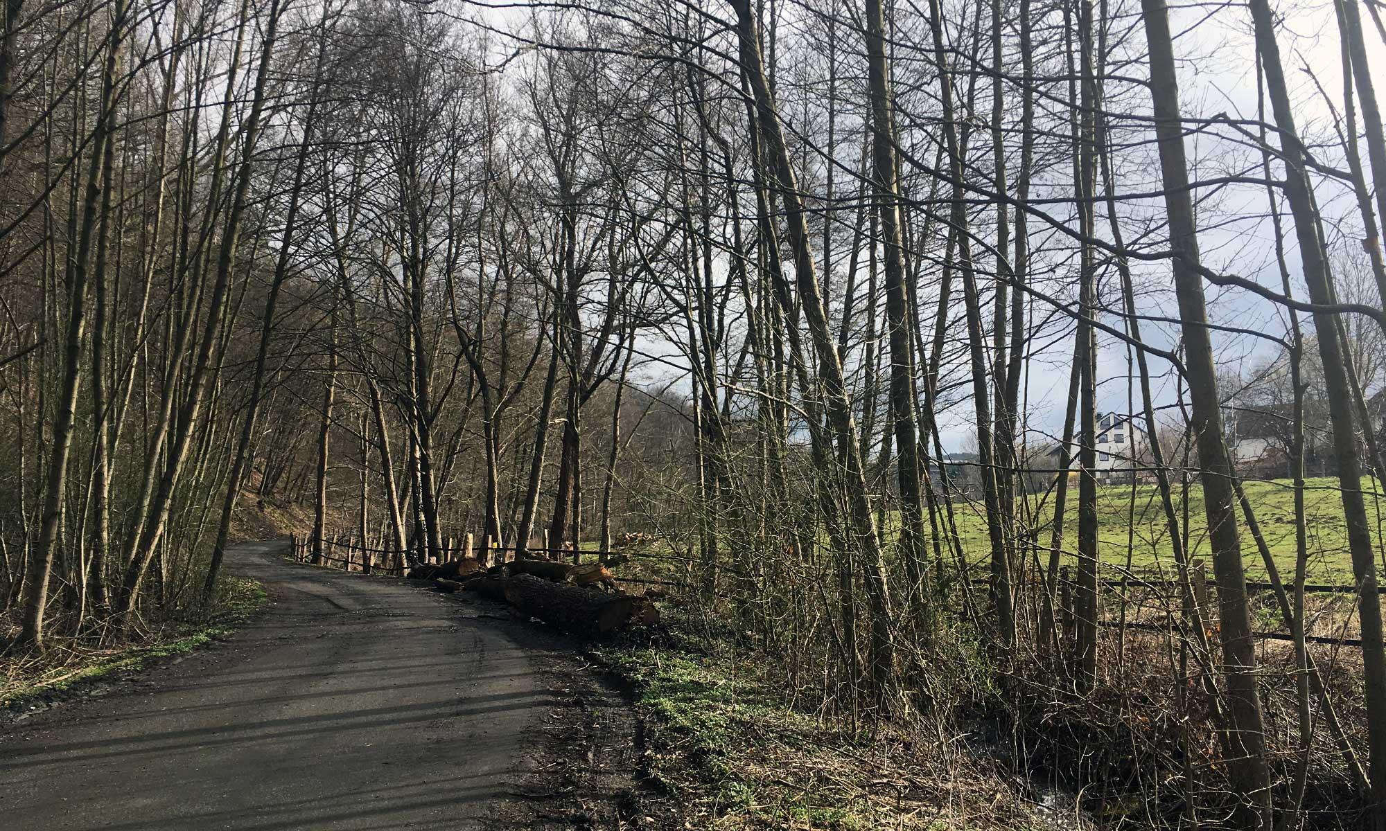 Einstieg Etappe nach Arnsberg
