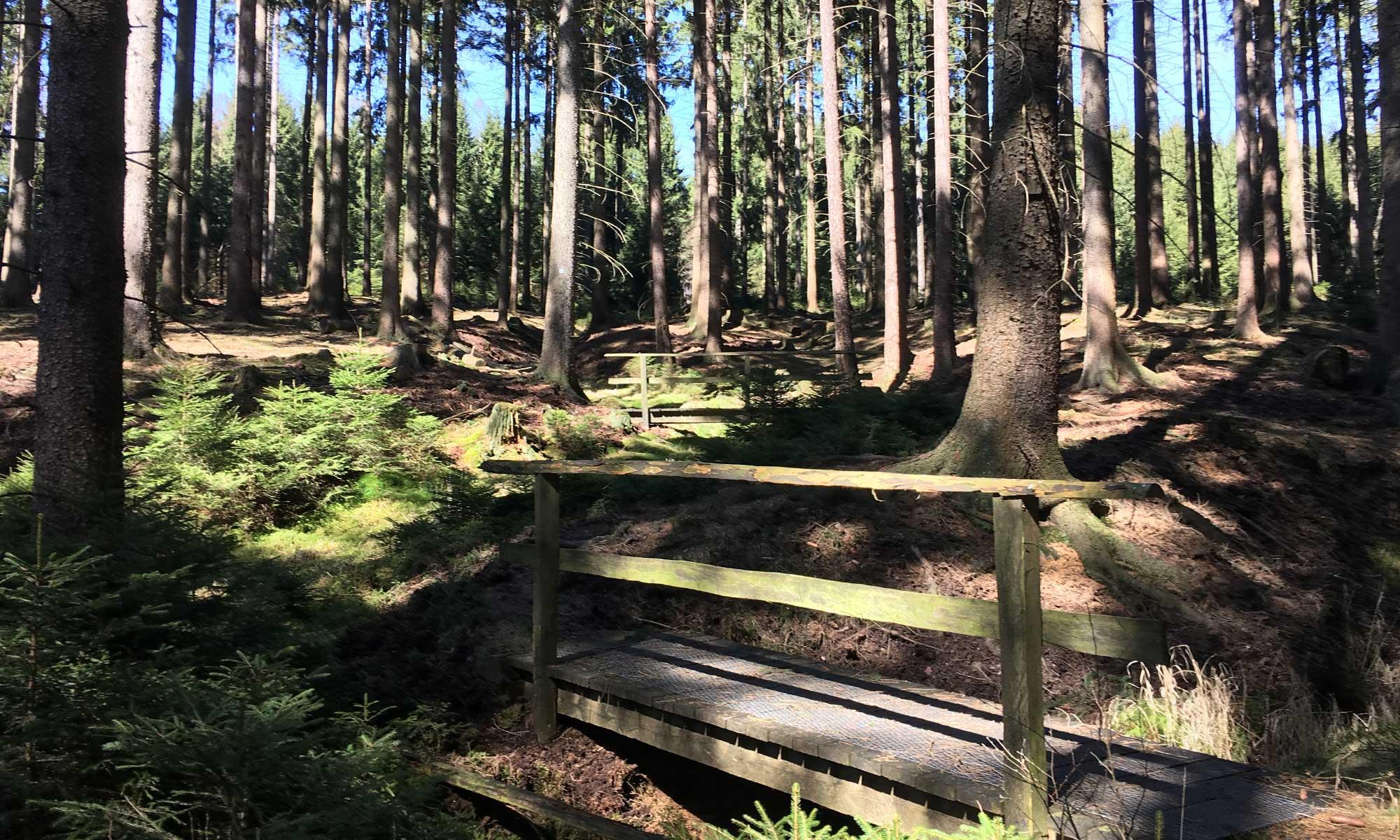 Eine Holzbrücke über einen Bach