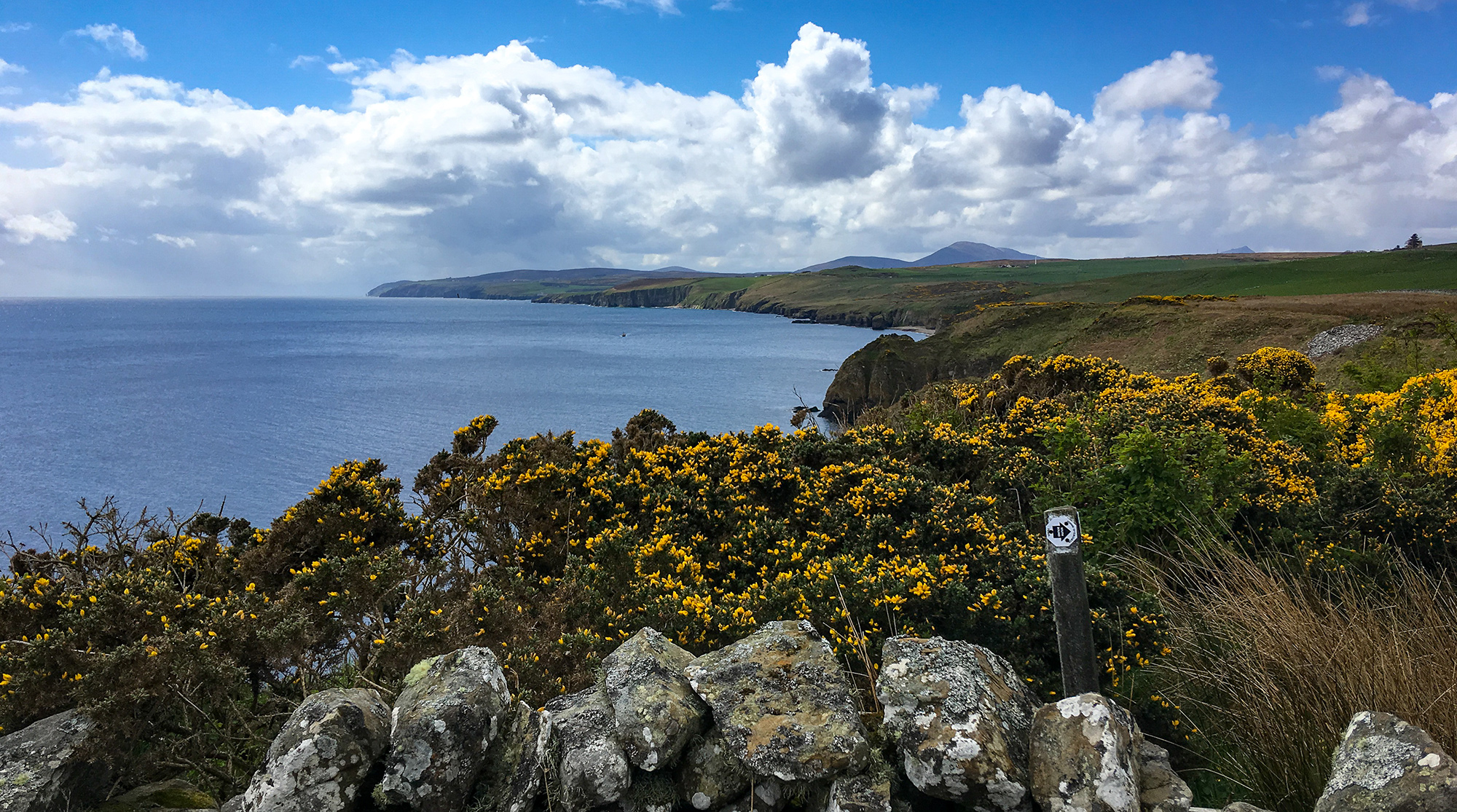 Küstenpanorama mit Steinmauer und Wegweiser John o'Groats Trail