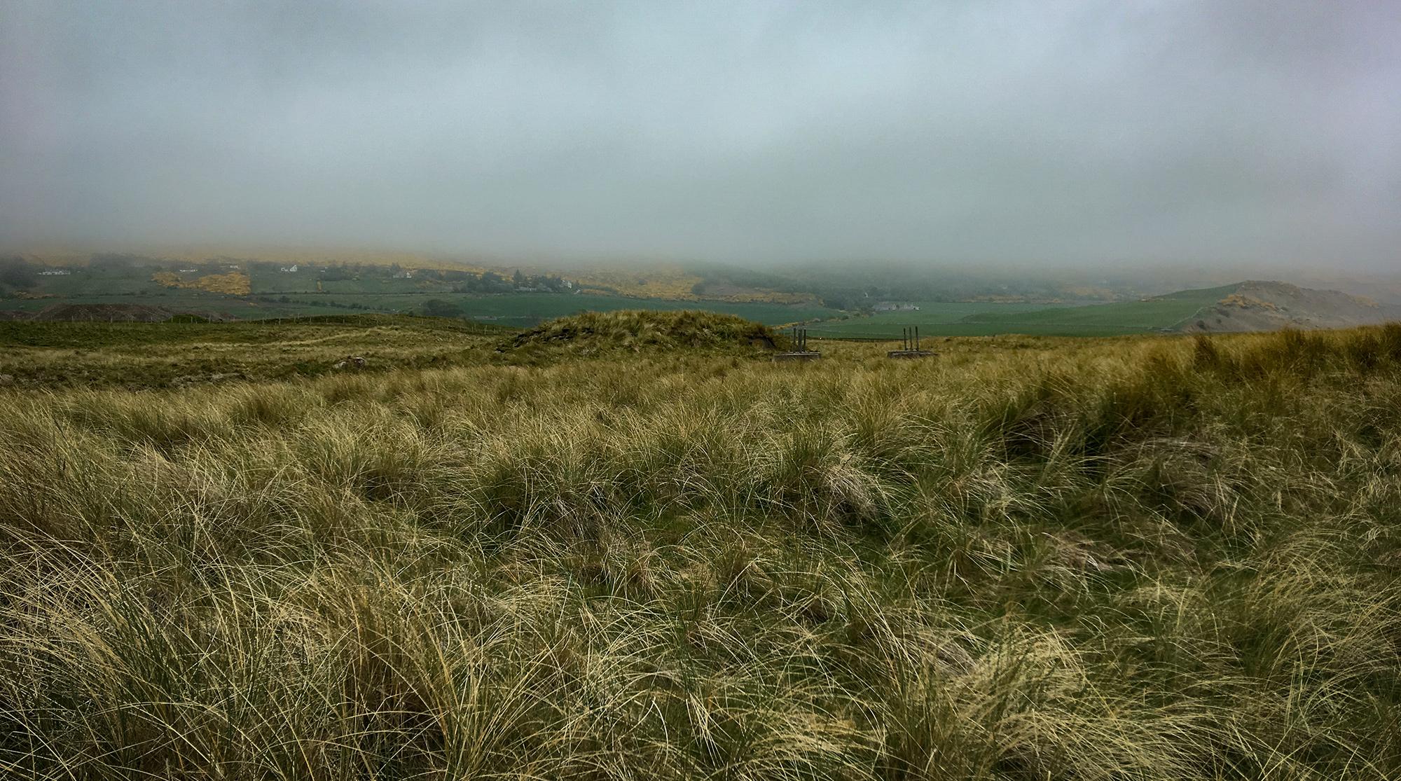 Dünen und Weidelad mit Häusern im Nebel