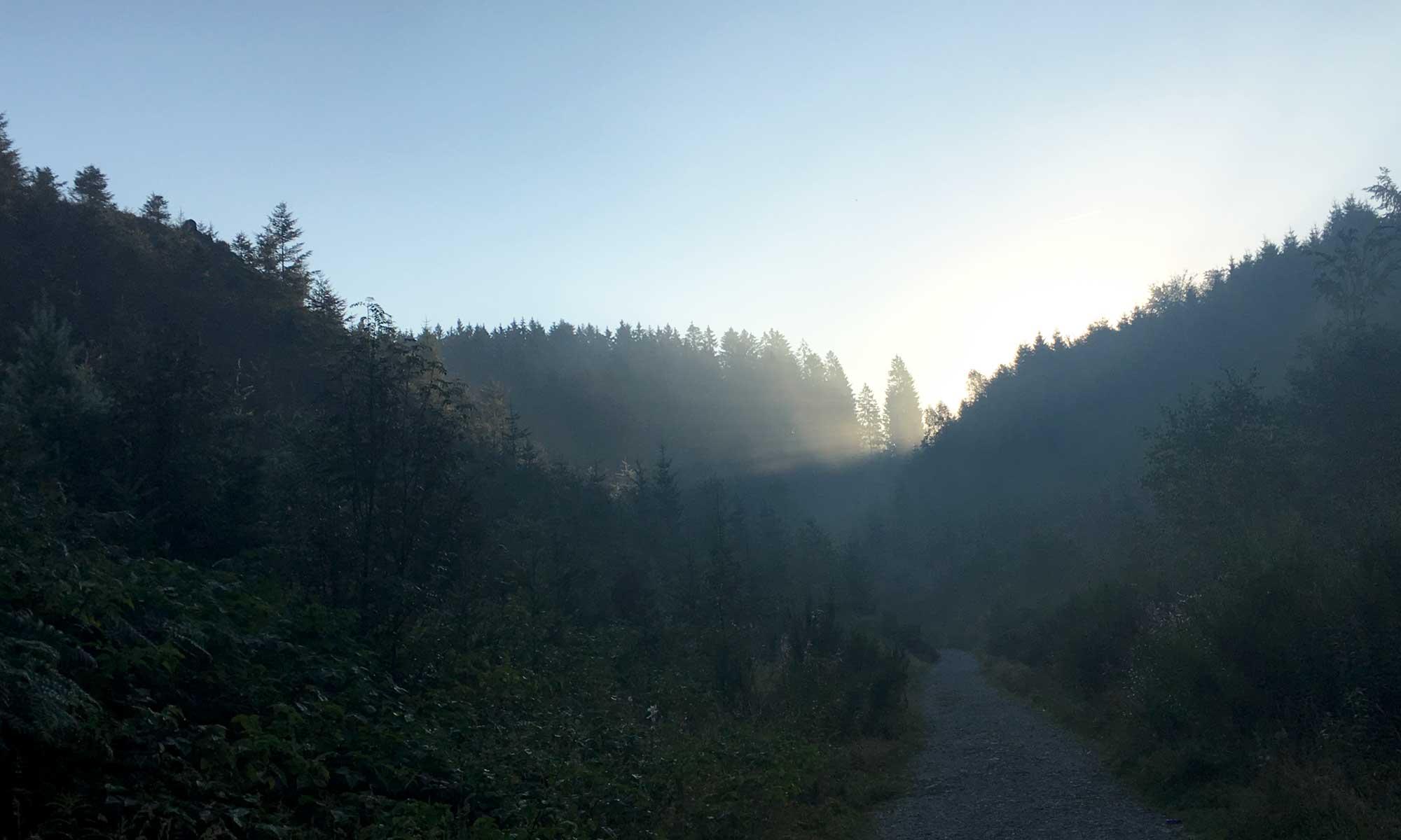 Morgenstimmung am Bayehon auf dem Weg zum Wasserfall