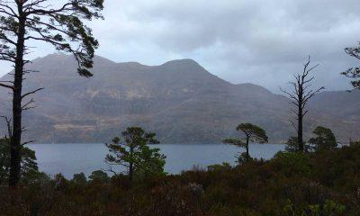 Blick auf Loch Maree
