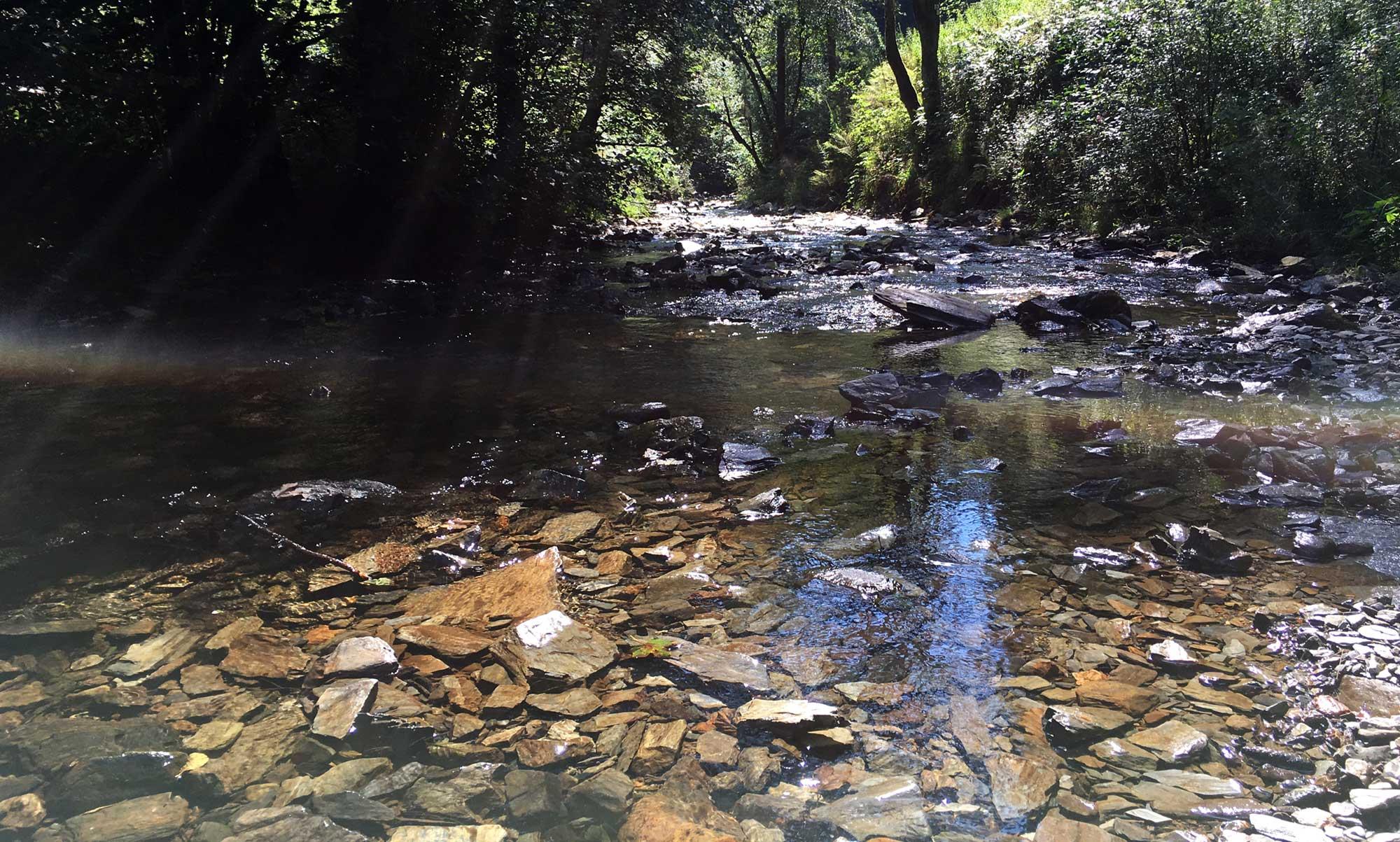 Wassergeits am Pouhon