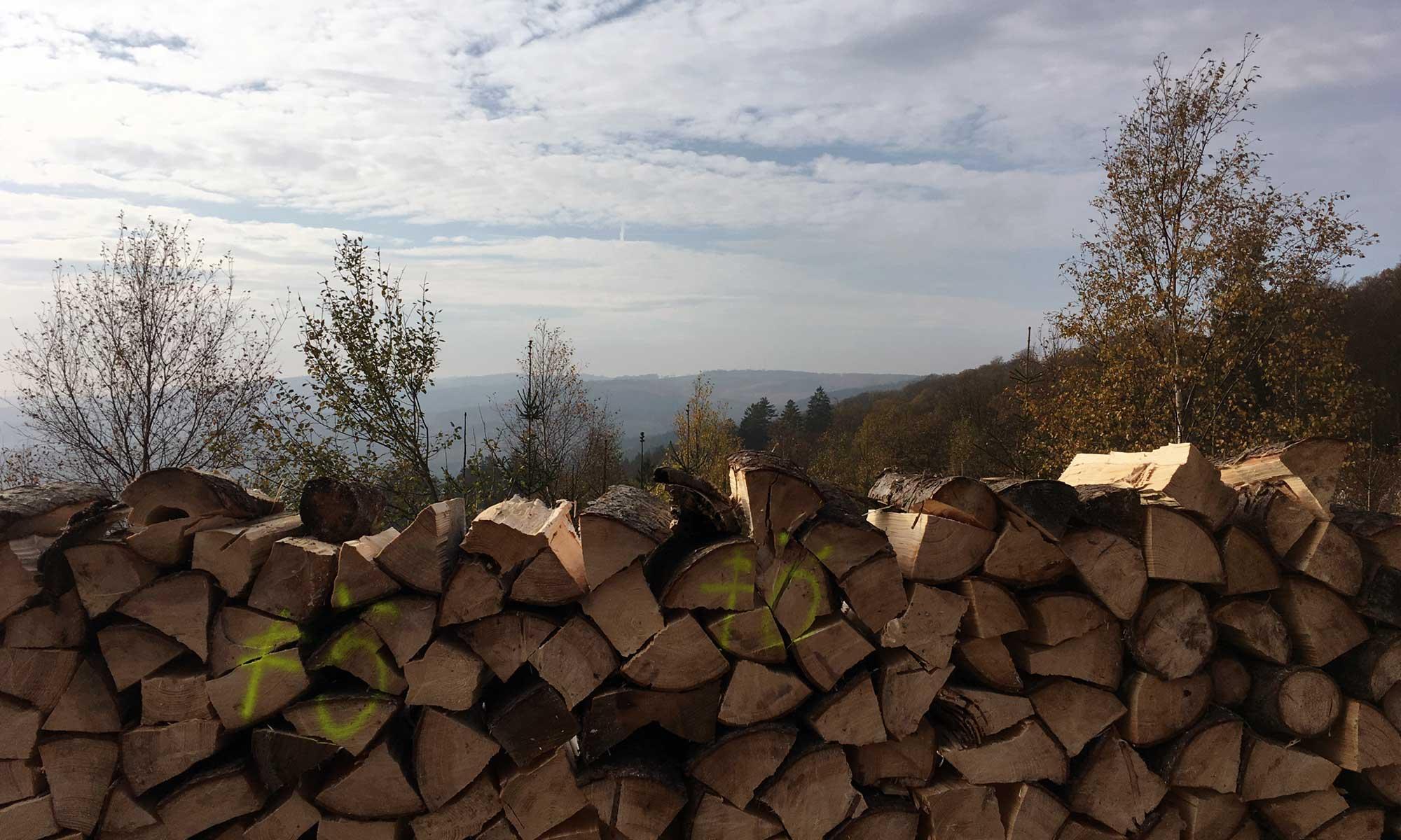 Panorama hinter dem Holzstoss