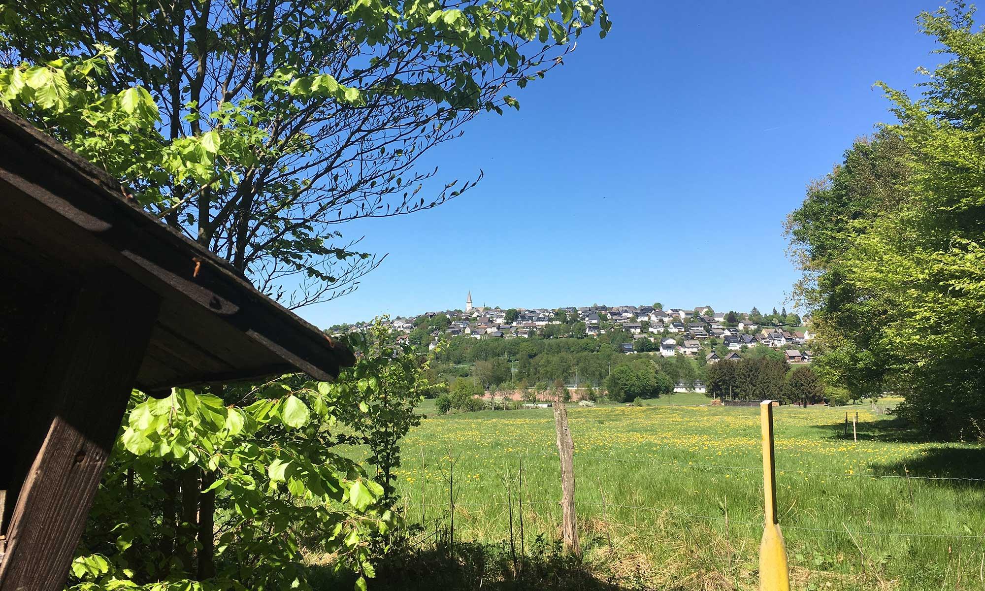 Sauerländer Waldroute Hirschberg Panorama