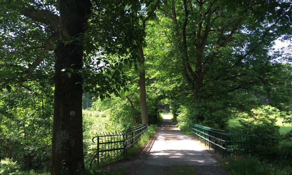 Brücke über die Heve