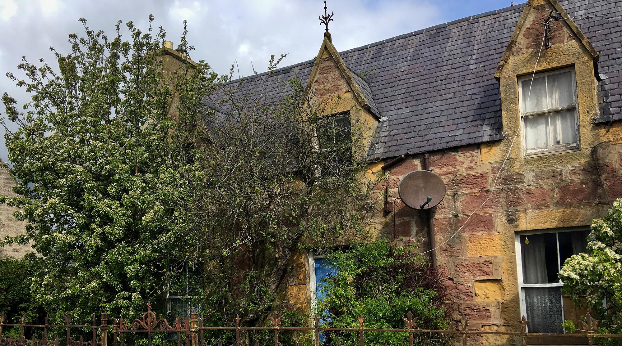 Steinhaus mit Baum