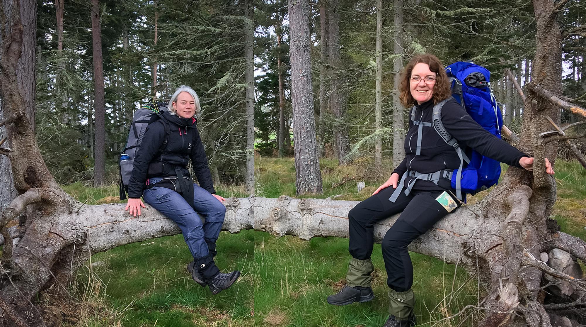 Zwei Frauen auf einem Baumstamm