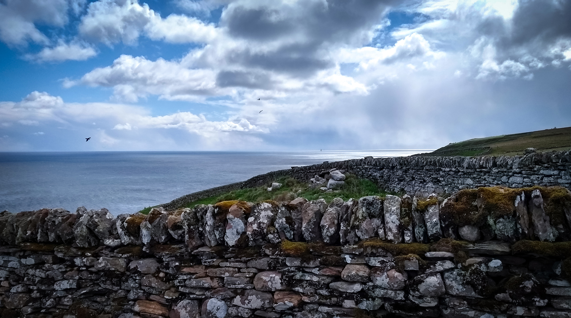 Steinmauern auf Klippe am Meer mit Möve