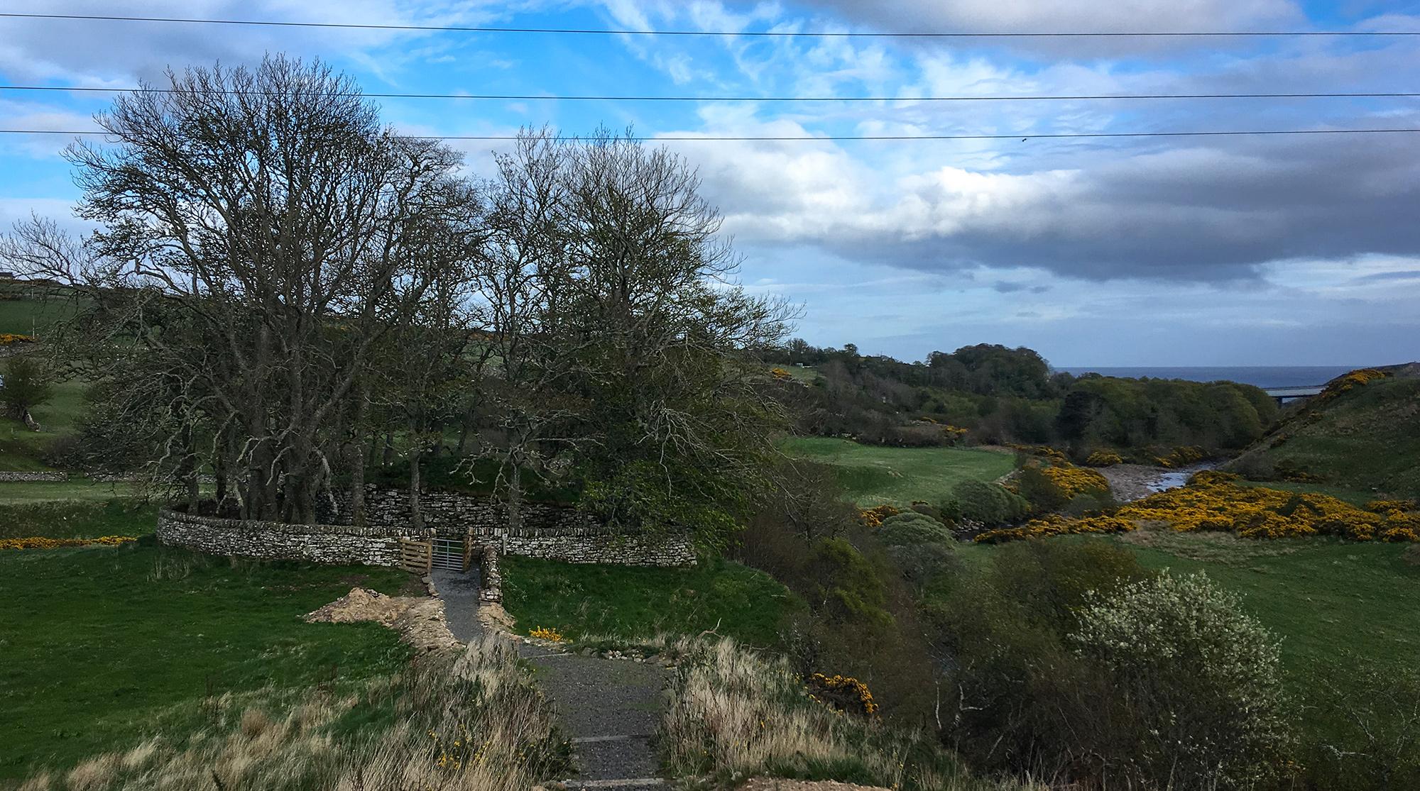 Dunbeath Broch von Steinmauer umzäunt und inmiten von Bäumen