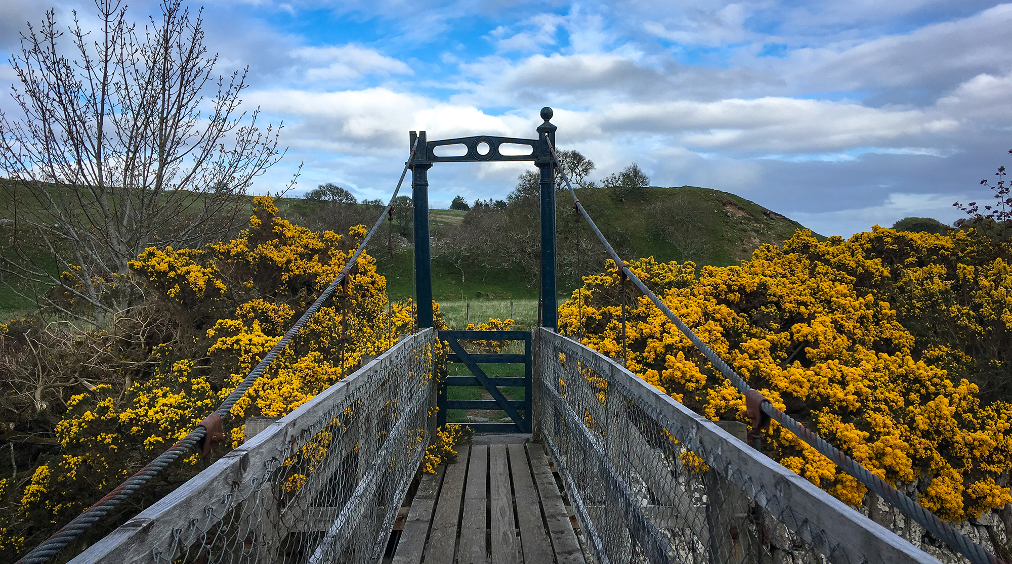 Brücke über den Burn of Houstry