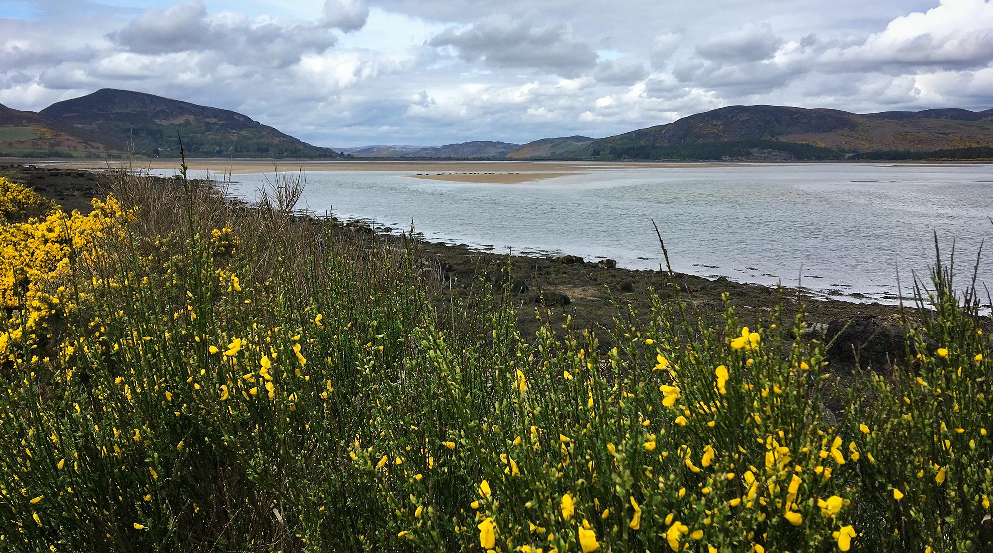 Blick zur Brücke The Mount am Loch Fleet