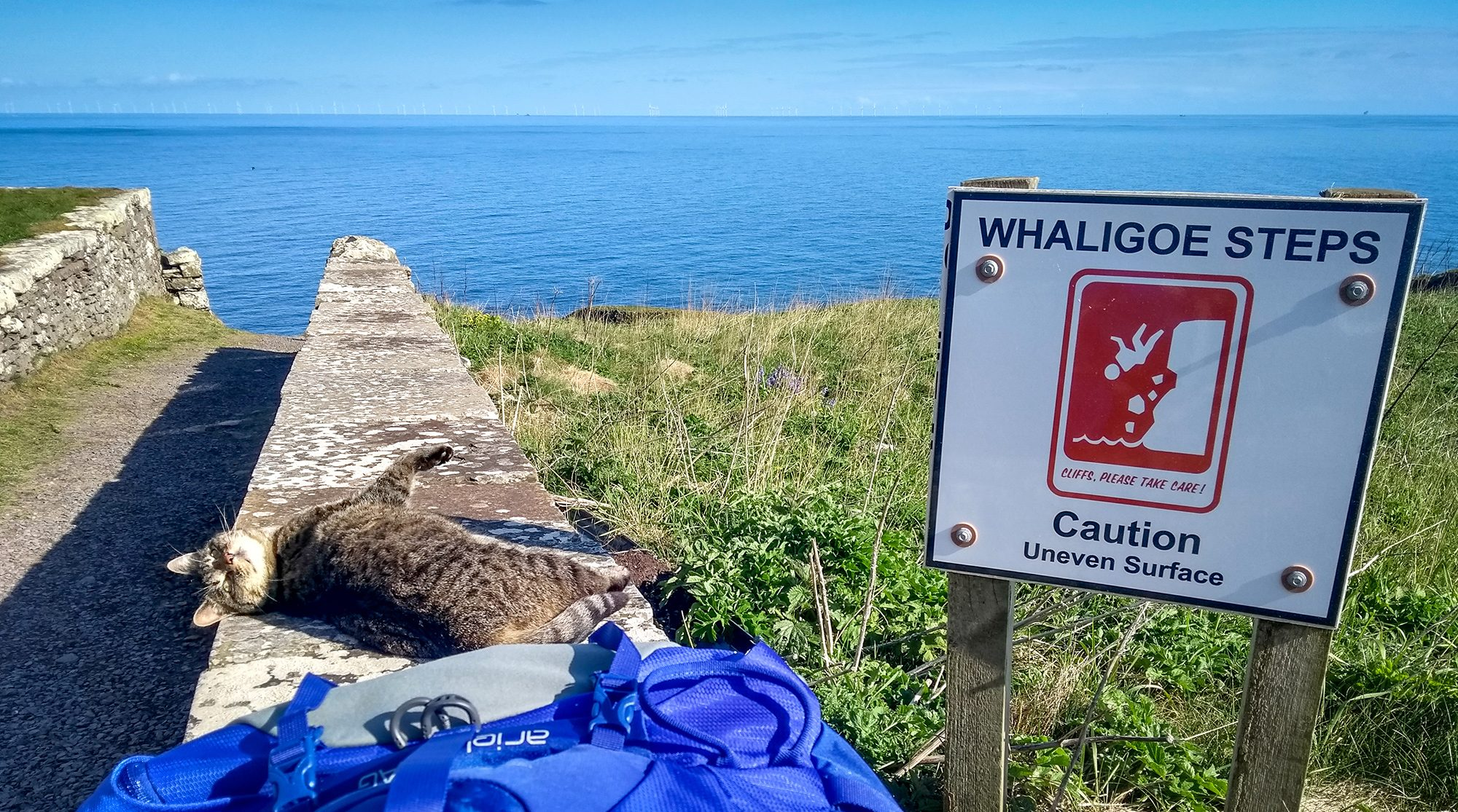Whaligoe Steps caution Schild