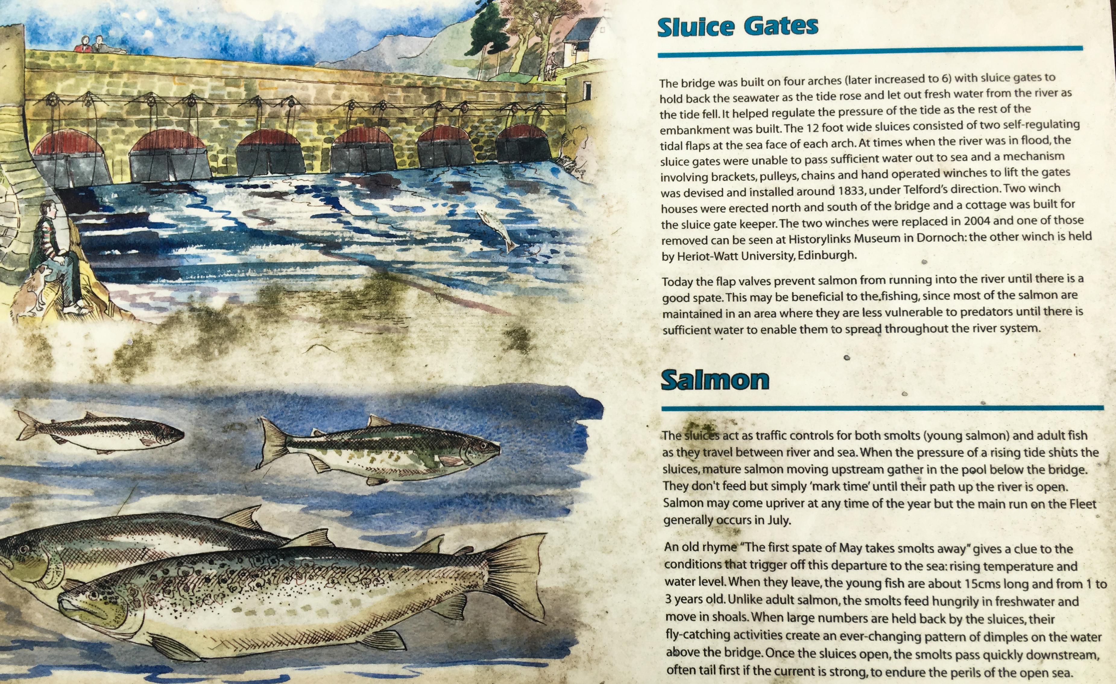 Sluice Gate Beschreibung