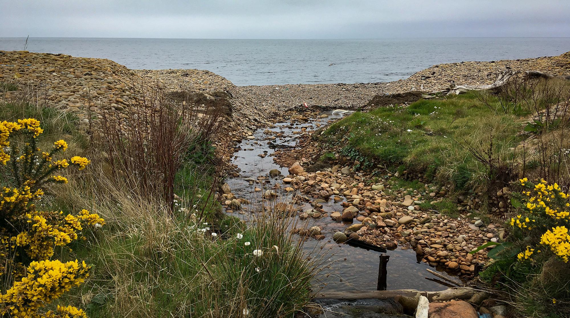 Flussmündung ins Meer mit Steinen und Ginster