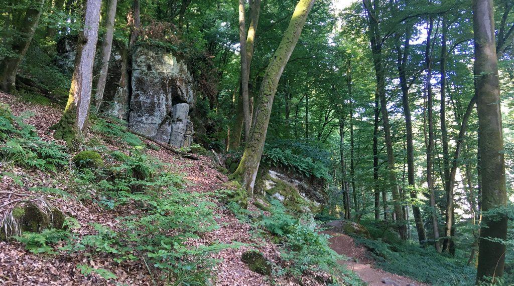 Buchenwald und Felsformationen auf Mullerthal Trail