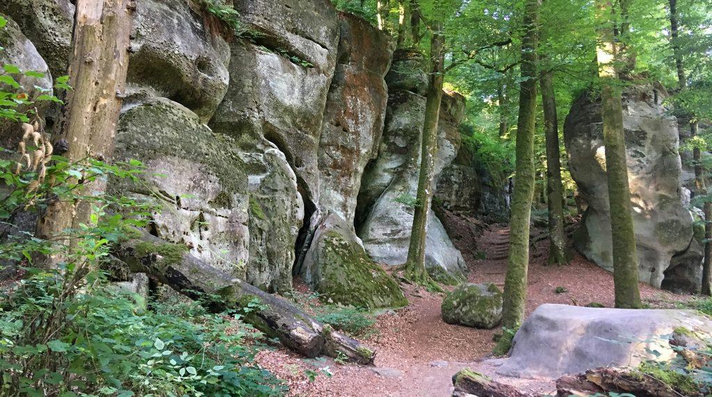 Felsgiganten im Buchenwald auf Mullerthal Trail