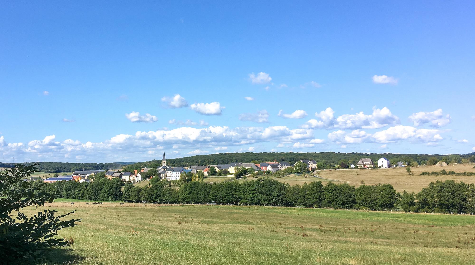 Blick über Weideflächen und das Dorf Herborn