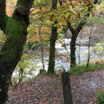 Garbh Uisge - Wildes Wasser