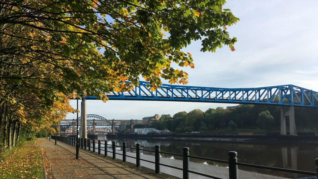Herbstbäume am Uferweg des Tyne, einer blauen Brücke im Vordergrund und 3 weitere Brücken im Hintergrund
