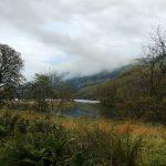 Herbstliches Gras und Farn am Loch Lubnaig, dahinter Hügel im Morgennebel