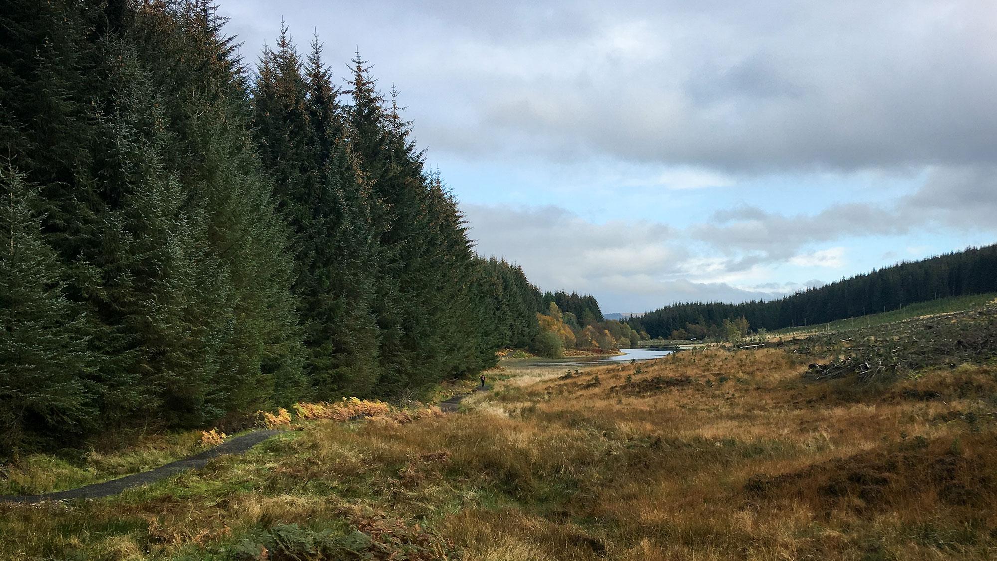Lochan Allt a Chip Duibh in den Menteith Hills