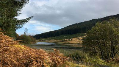Lochan Allt a Chip Duibh nah in den Meteith Hills