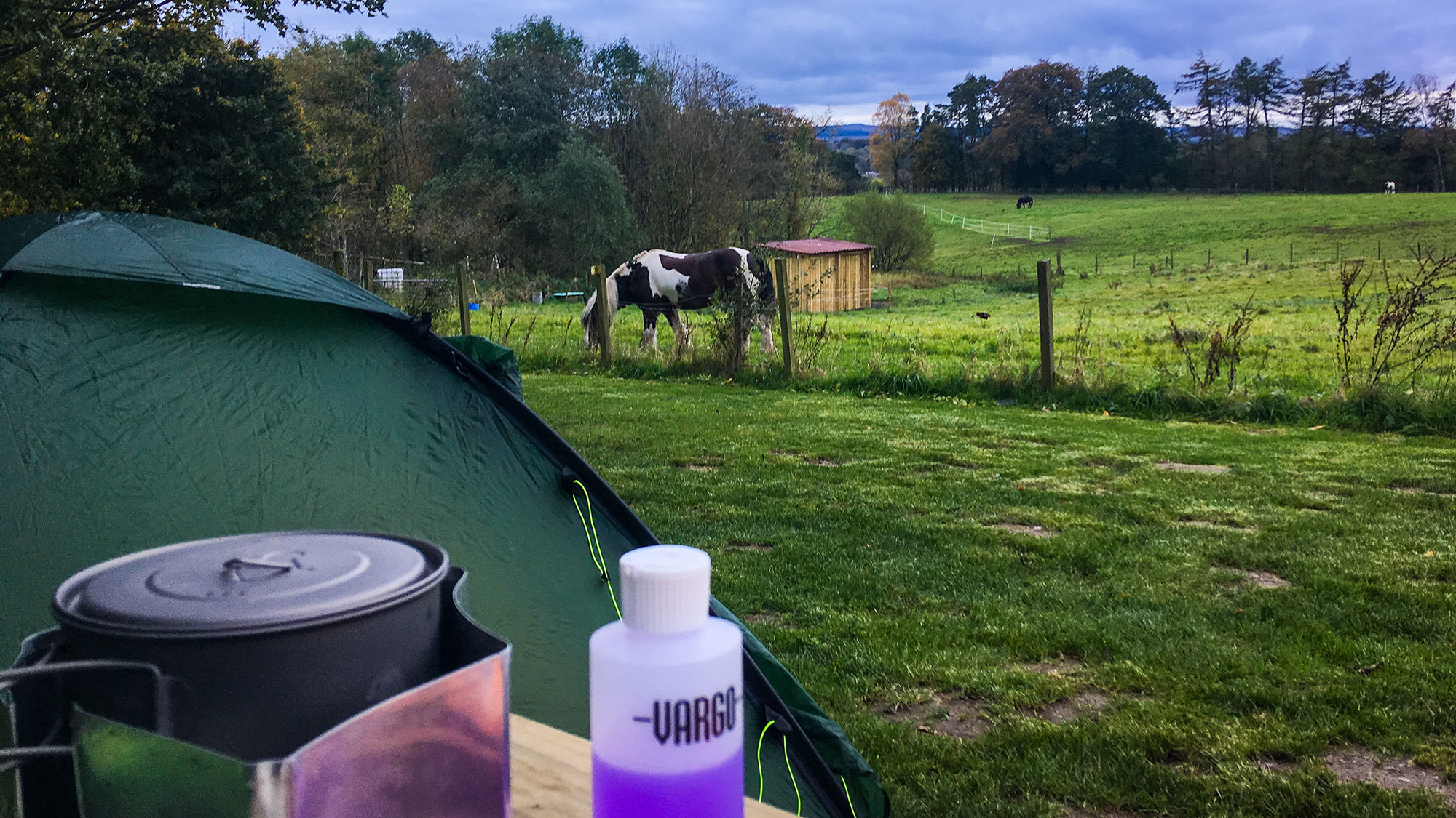 Das Pferd am Campingplatz