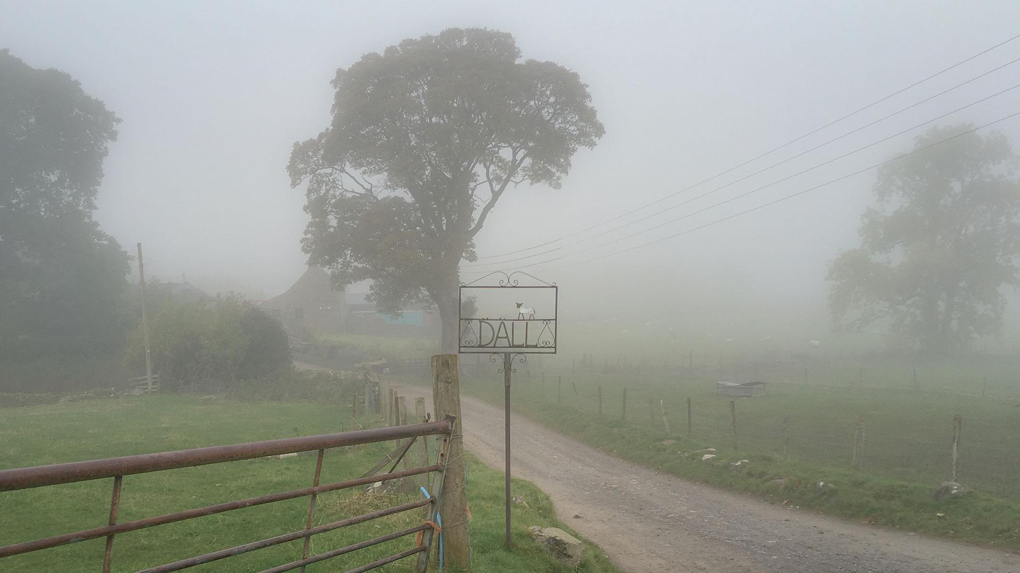 Dall Farm