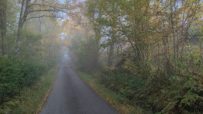 Single Road nach Kenmore im Morgennebel