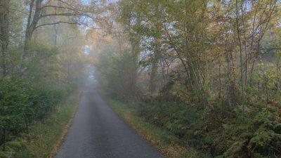 Single Road nach Kenmore im Morgennebel