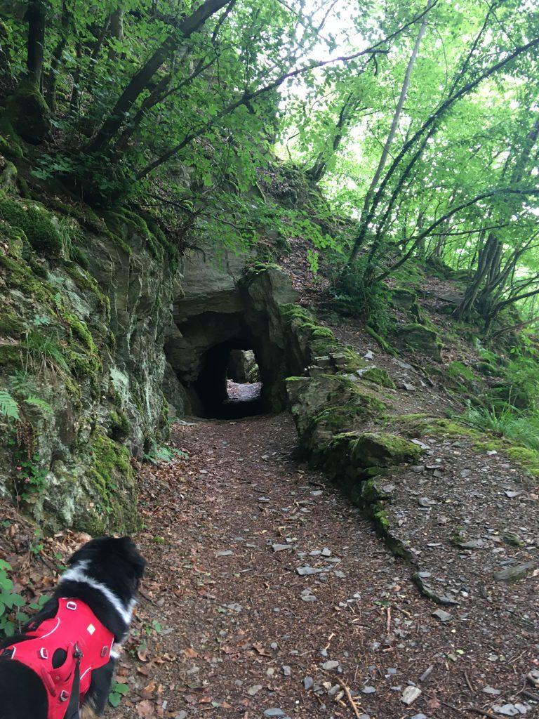 Tunnel in Schiefergebirge auf dem Soonwaldsteig