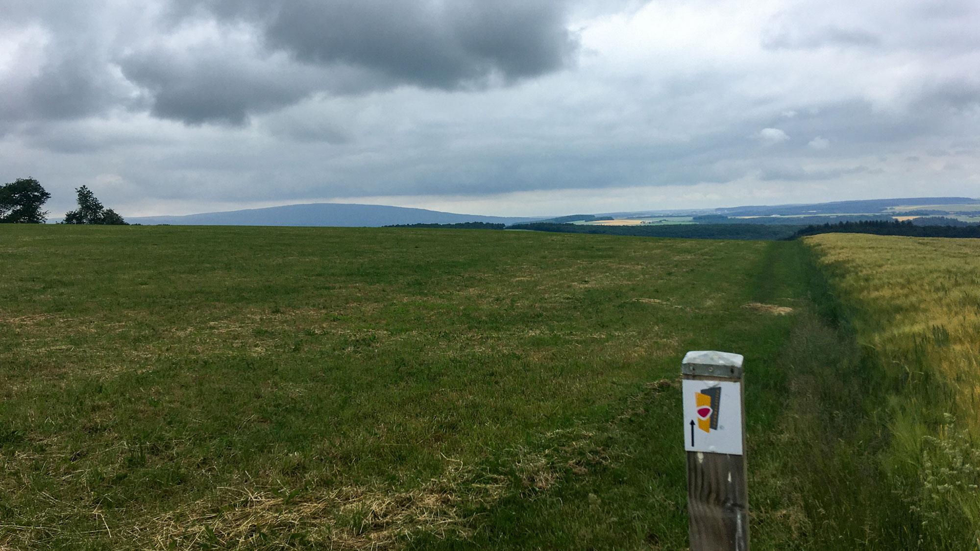 Blick über Acker mit Wegweiser vom Soonwaldsteig, im Hintergrund auf der Anhöhe Bundenbach
