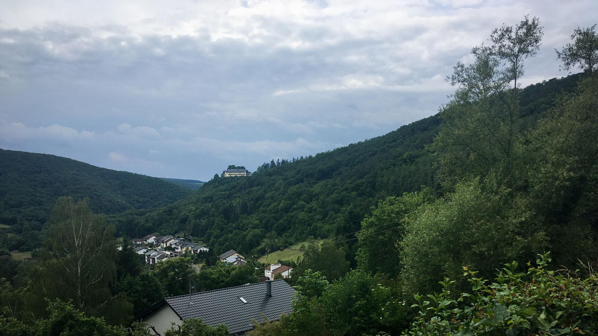 Das Schloss Wartenstein auf einem bewaldeten Felsen