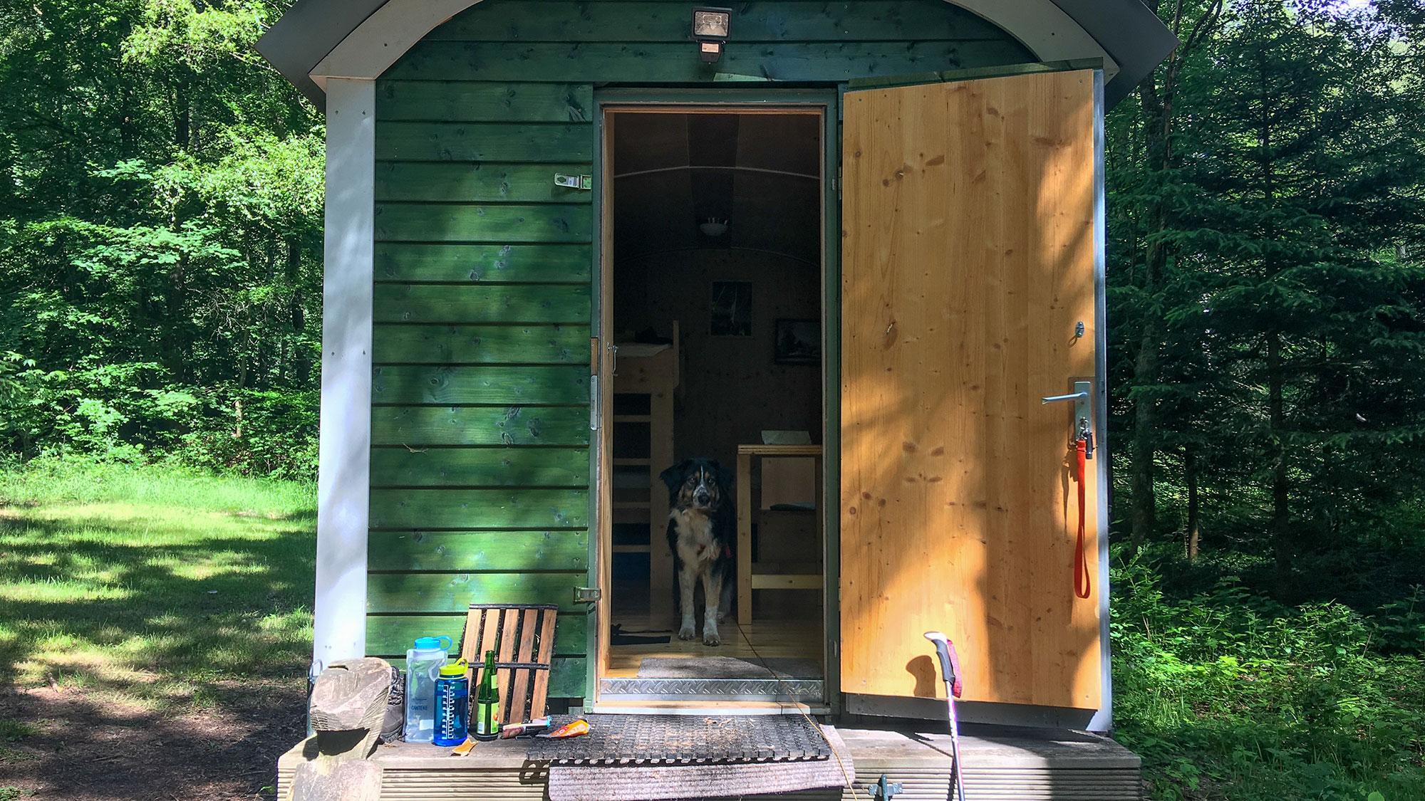 Bauwagen an der Lauschhütte mit Hund im Eingang