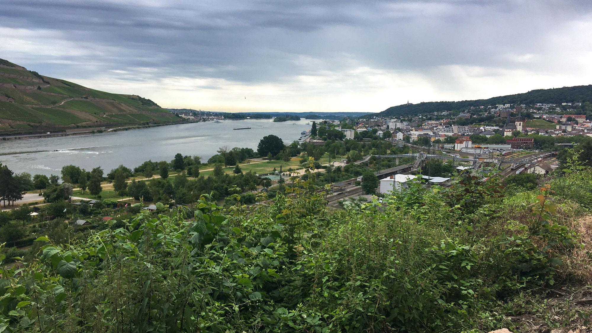 Soonwaldsteig - Ankunft in Bingen
