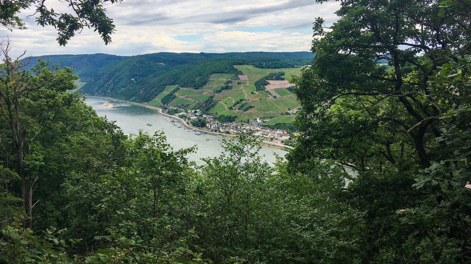 Rheinpanorama bei Bingen