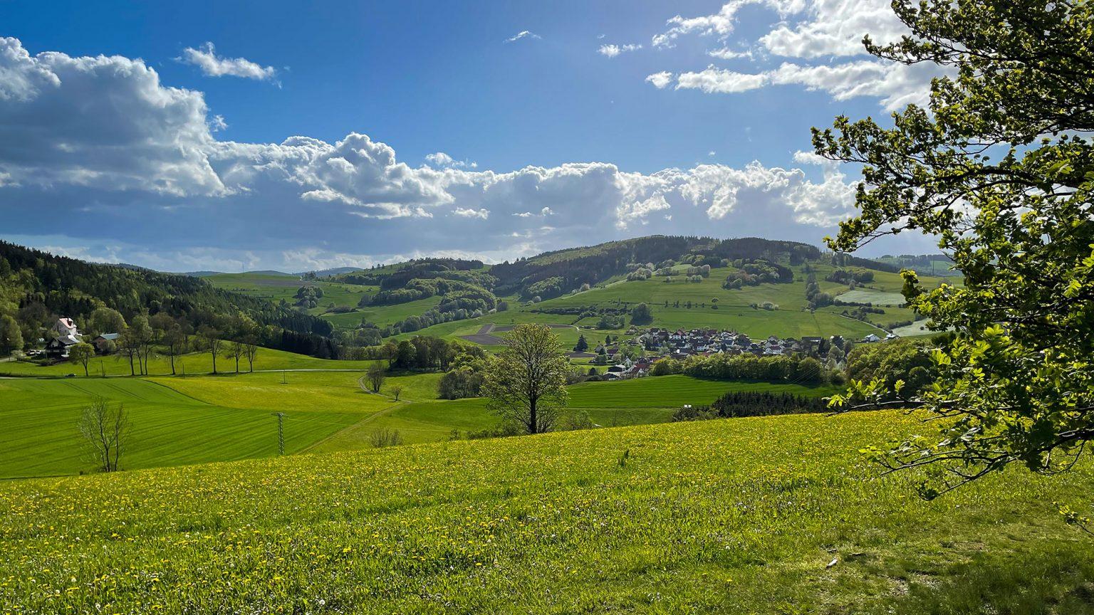 Blick über Wiesen und runde Hügel